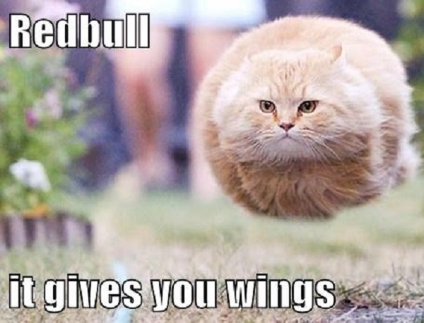 "The Customer That Sued Red Bull For ""Not Giving Him Wings"""