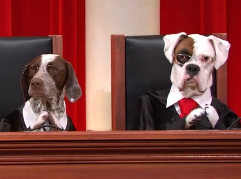 Ten of The Craziest Law Suits Ever Filed In Courts