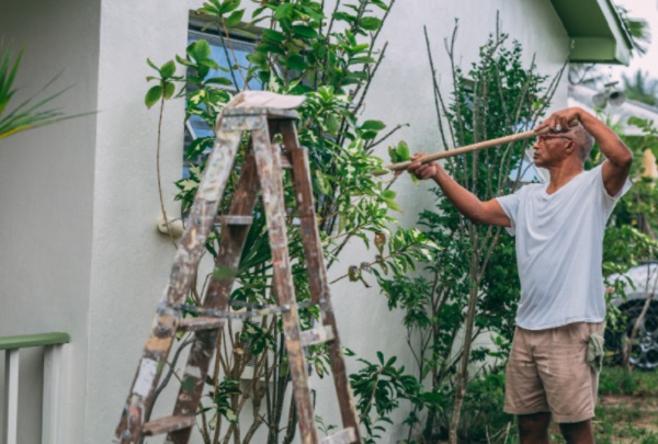Top 10 Tips To Prepare Your Home For Painting This Summer