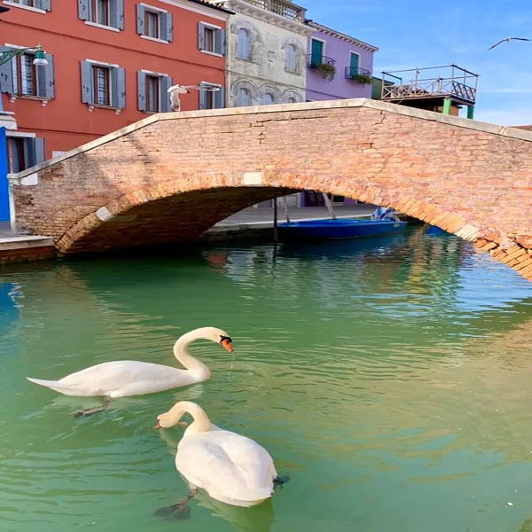 Clear Canals In Venice and Milan
