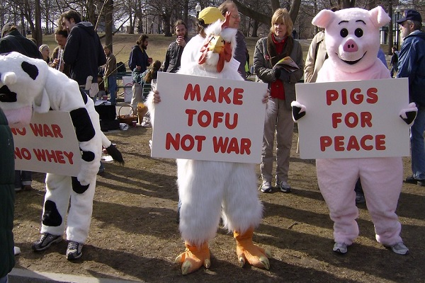Ten of The Most Passionate Celebrity Animal Rights Activists