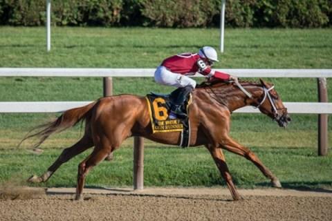 Top 10 Best Jockeys in Belmont Stakes