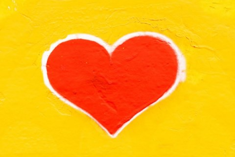 Ten Ways To Properly Take Care Of Your Heart And Prevent Cardiovascular Conditions