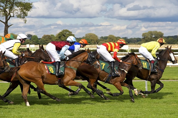 Ten Horse Racing Betting Strategies You Need To Start Using