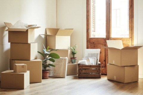 Top 10 Tips for Hiring of Flat-Rate Movers (Pros and Cons)