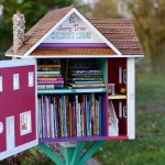Cherry Tree Little Free Library