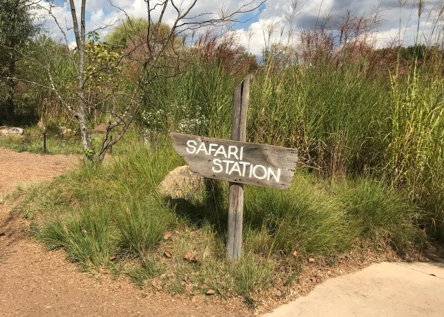 Safari Station