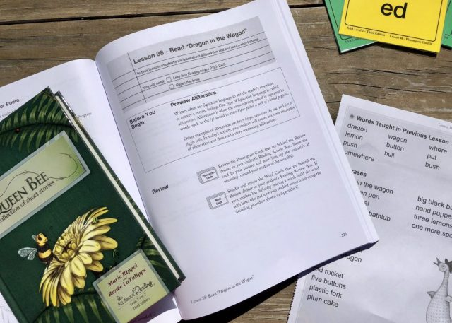 All About Reading Lesson Plan