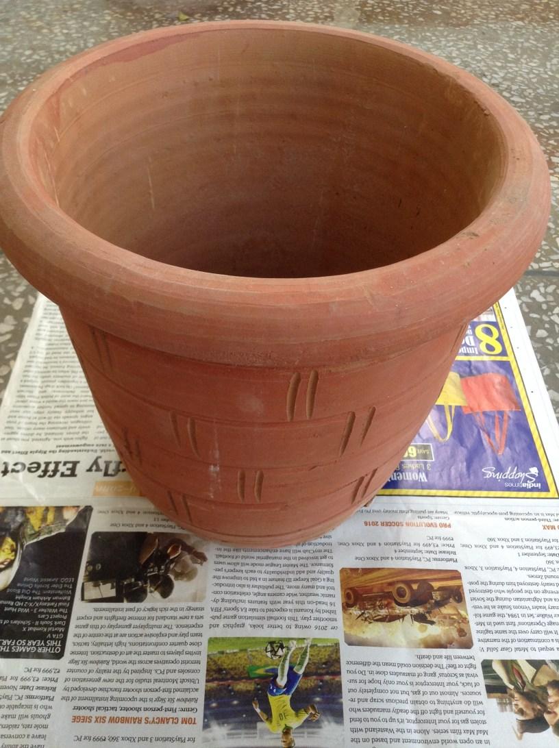 A Terracotta Pot