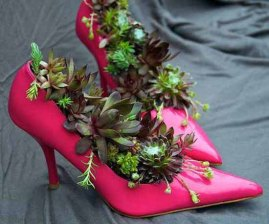 A beautiful set of pink heels serves as a lovely container for these colourful succulents. Image source: http://1.lushome.com/wp-content/uploads/2012/04/recycled-crafts-planters-backyard-ideas-1.jpg