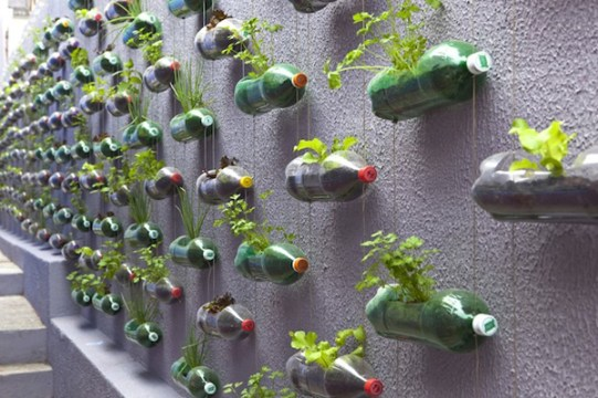 Only soda bottles used to create such a lovely pattern on the wall. Image source: http://www.decoist.com/2014-02-10/upcycle-into-planter/