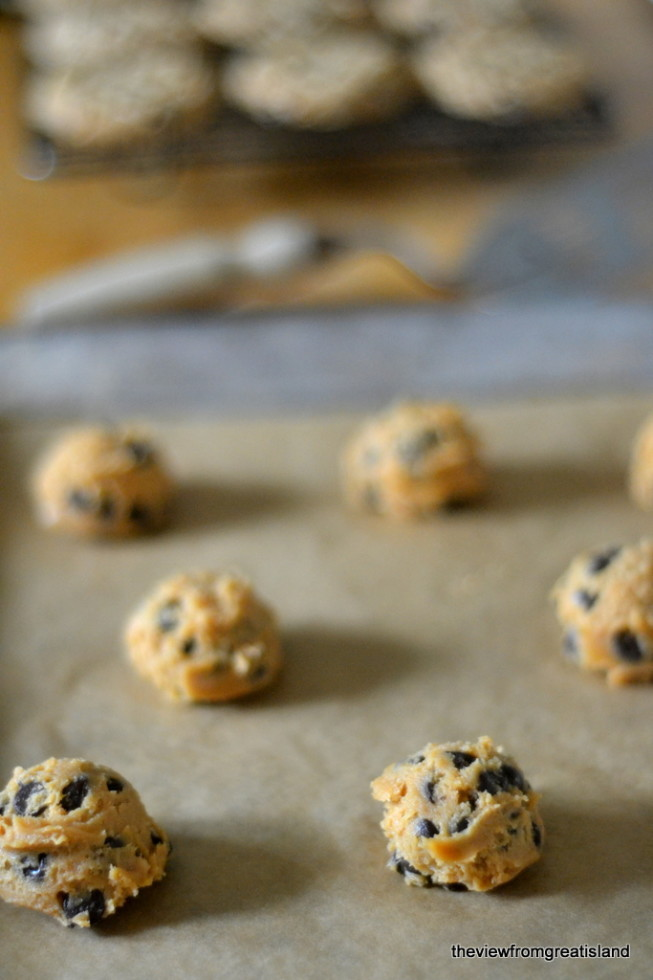 flourless cashew butter chocolate chip cookies 4