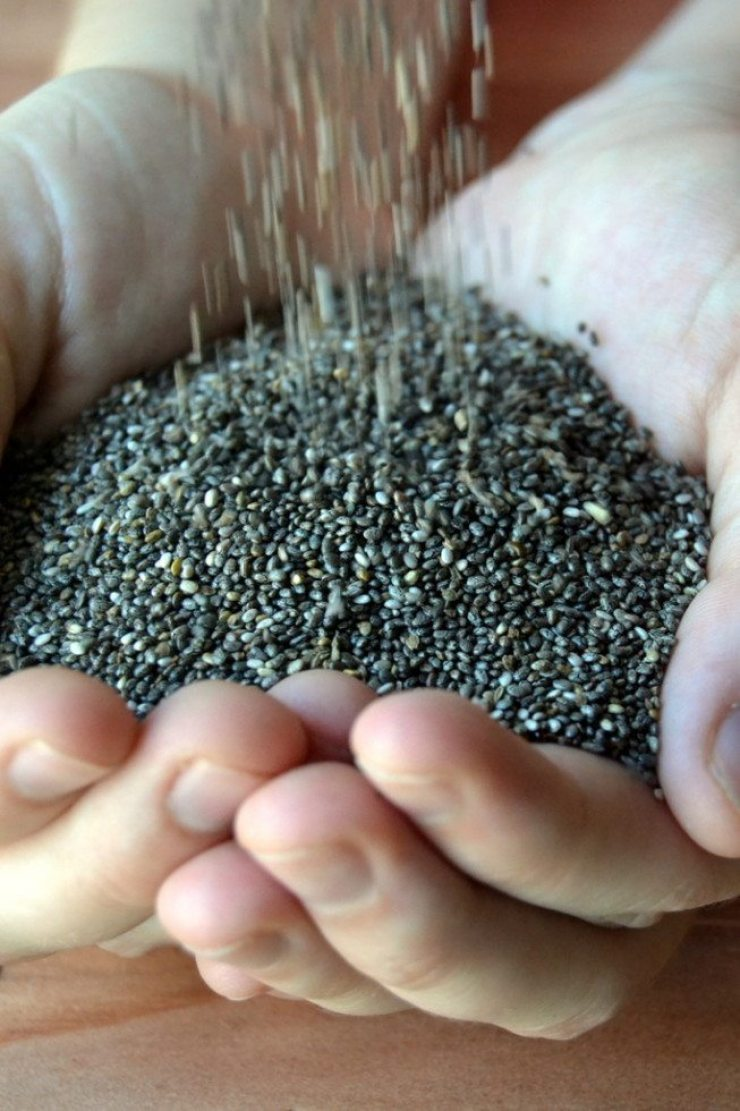 Hands holding healthy chia seeds