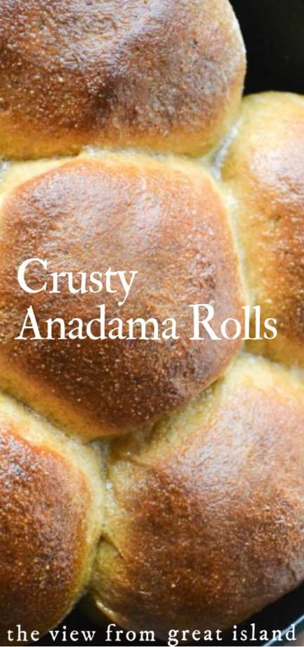 Crusty Anadama Rolls ~ cold weather brings out the bread making urge in me, and Anadama is probably my favorite earthy, homemade bread of all time. #bread #homemade #recipe #NewEngland #molasses #cornmeal #rolls #yeast #crusty #easy #dinnerrolls