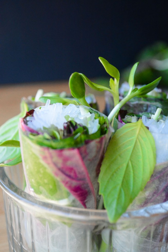 Fresh and healthy summer rolls