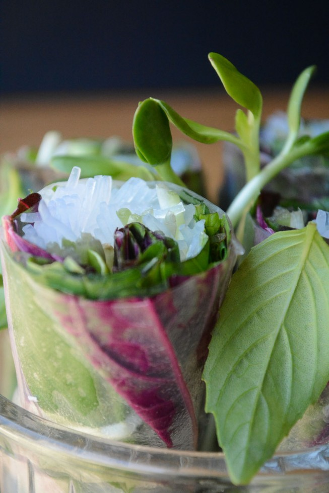 Spinach and Basil Summer Rolls