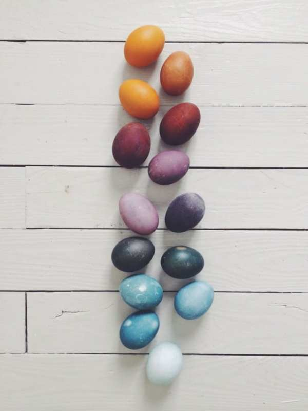 NATURALLY DYED EGGS by Magnesium Blue