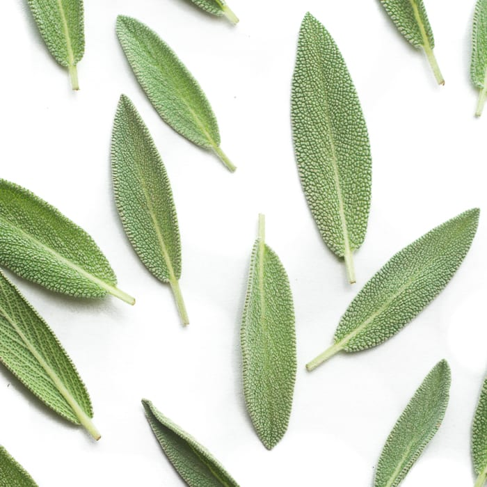 How to Dry Herbs in the Microwave ~ fresh sage ~ theviewfromgreatisland.com