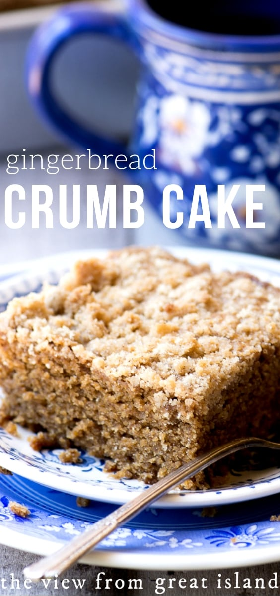 Gingerbread Crumb Cake is a warm spiced coffee cake made super moist and tender with molasses and sour cream ~ it's the perfect way to start a chilly morning, or treat your overnight guests during the holidays! #cake #gingerbread #bestcoffeecake #coffeecake #snackcake #spicecake #gingerbreadrecipe #holidaybreakfast #coffeecakerecipe #crumbcake