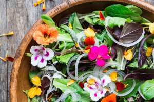 Spring Salad with Edible Blossoms