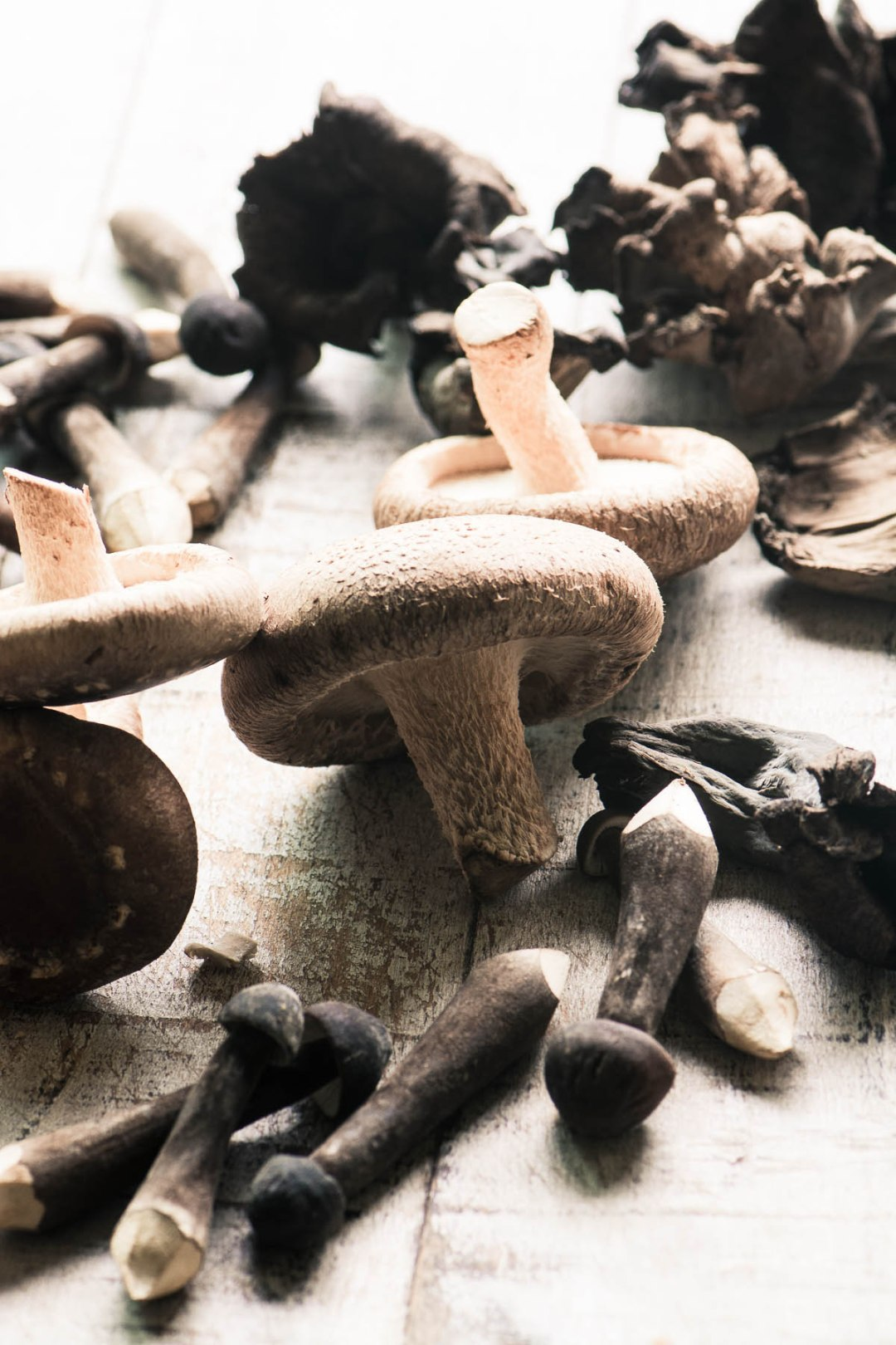 Raw and wild mushrooms for Pasta with Wild Mushrooms and Hazelnuts