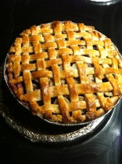 Wild alpine blueberry and huckleberry pie