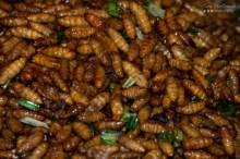 Fried Silk Worms - Street Food - Bangkok, Thailand