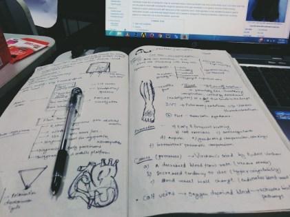 CHE Literature Study