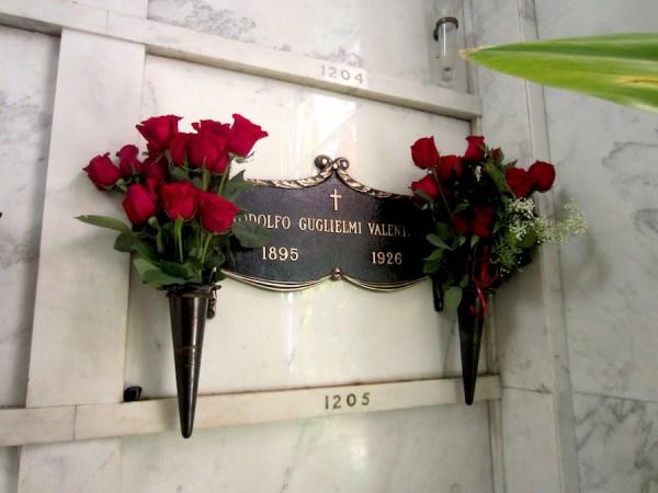 valentino-roses