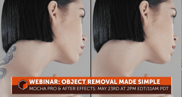 object removal mocha after effects