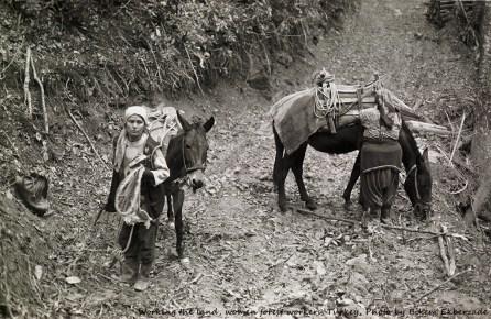 Adapazari, Turkey -- Forest Workers Photo by Bikem Ekberzade