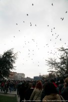 And those birds were also there to say goodbye to the 15 year old.