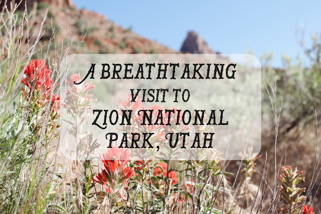 Zion Title Card.jpg