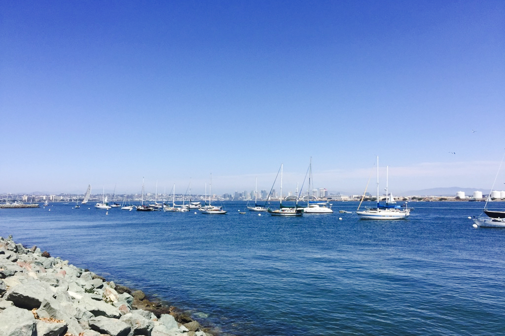 Downtown from Shelter Island.jpg