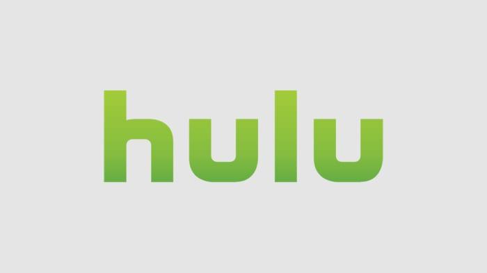 How to Watch Hulu in Russia