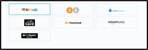 Torguard Payment Options