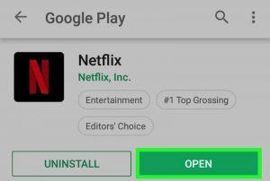 Open Netflix