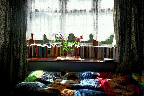 Kitty with books from Bohemian Homes