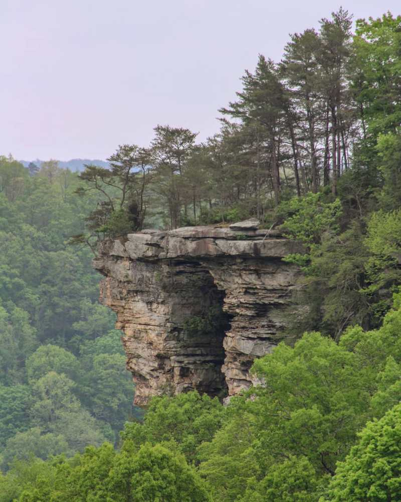 stone door overlook south cumberland state park tennessee
