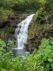 Waimea Falls, Oahu, Hawaii