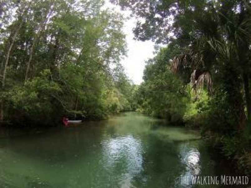 Weeki Wachee, Florida