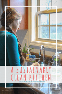 Sustainable Clean Kitchen