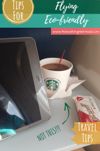 flying eco-friendly