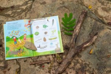 nature books kids usborne