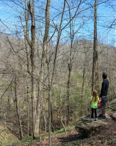 hiking with kids in clarksville tennessee rotary park