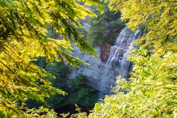 View of the waterfall from Fall Creek Falls overlook.