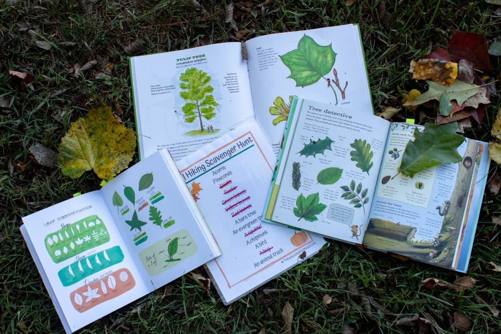 fun activities for kids scavenger hunt nature outdoors