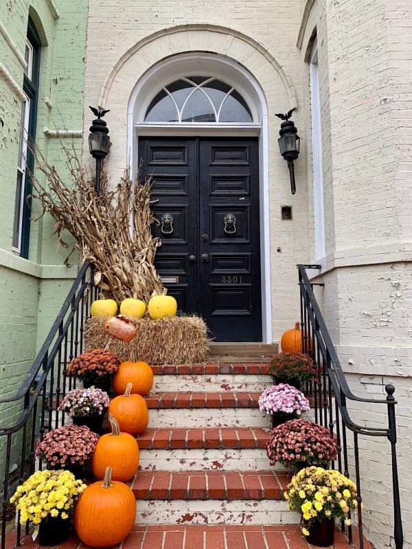 pumpkin front door home decor curb appeal washington dc