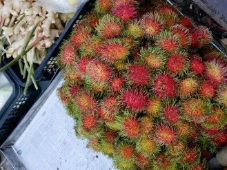 Rambutan! It's like a sweet and sour grape that vaguely resembles a lychee.