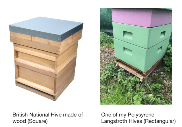 National and Langstroth Hives